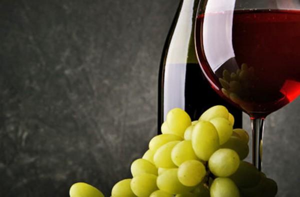Weinseminar für Einsteiger