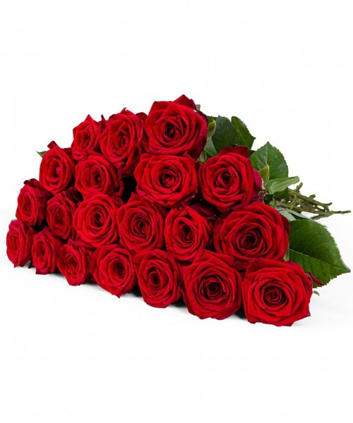 Rote Premium-Rosen und Champagner